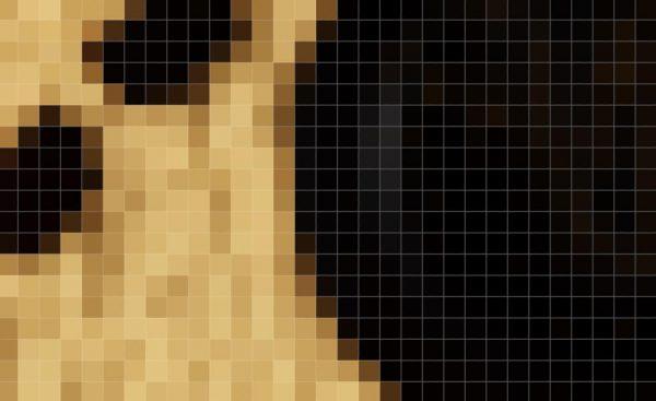 Pixelii într-o imagine standard de 72 de ppi